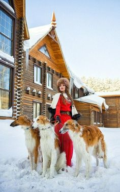 Model with three borzois. Fashion photo. #animals #dogs #borzoi