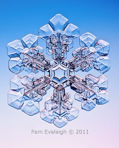 Snowflake photo by by Pam Eveleigh