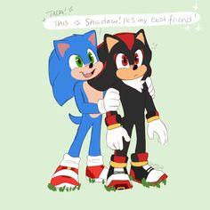 Shadow The Hedgehog, Sonic The Hedgehog, Sonic Videos, Baby Hedgehogs, Hedgehog Movie, Pirate Art, Kingdom Hearts Art, Sonic Franchise, Sonic And Shadow