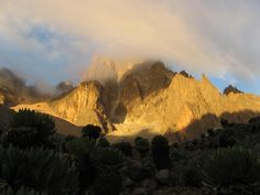 What a nice view from here! Trekking over Mount Kenya .. Che bella la natura vista da qui! Trekking sul Monte Kenya Trekking, Mount Kenya, Half Dome, Nice View, Bella, Monument Valley, Grand Canyon, Canvas, Painting