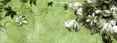 Green and White Flowers Facebook Cover CoverLayout.com