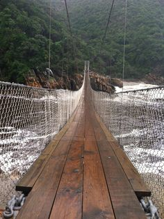 Tsitsikamma National Park, South Africa  (suspension bridge) Tsitsikamma National Park, African Holidays, Out Of Africa, Suspension Bridge, African Safari, Travel Inspiration, Motivation Inspiration, Beautiful Places To Visit, Africa Travel
