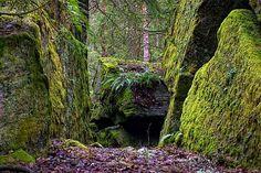 Der Meisterdieb Tullberg, weit draussen im Wald liegt die Grotte, wo er sich versteckt hielt