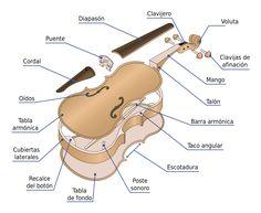 Partes del vioín
