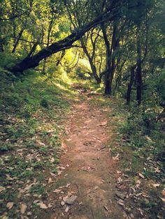Getaway from Delhi: A Trek to Nagtibba #Nature #Ideas #travel
