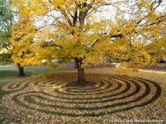 labyrinth around the tree. I have a simple labyrinth around a tree in my yard, too. What Is A Labyrinth, Labyrinth Garden, Labyrinth Maze, Land Art, Garden Art, Garden Design, Garden Studio, Walking Meditation, Meditation Center