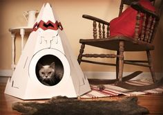 I think this would be great for a cat :)  or a small dog for that matter :)
