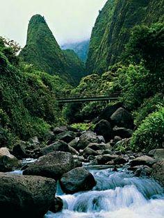 iao valley needle #maui  #hawaii