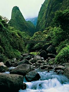 iao valley needle #maui  #hawaii! We want to get married on a beach in Hawaii, then fly to Bora Bora for our honeymoon!