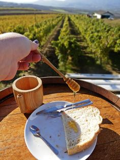 Cheers! Following the Thracian Wine Route, Turkey | The Anti-Tourist