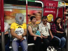 #ostrichpillow in #hongkong. #spotdesign Hong Kong, Tech, Pillows, Design, Tecnologia, Cushions, Pillow Forms, Technology