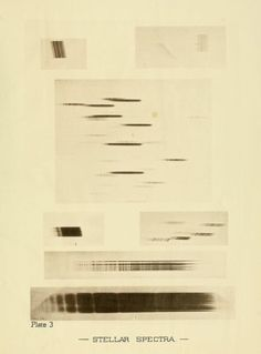 Plate 3. Stella spectra. An investigation in stellar photography. 1886.