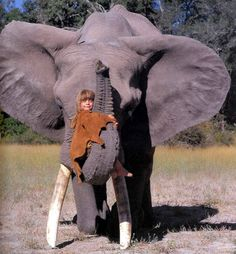 Real Life Mowgli--Tippi Degre in the African wild.with elephant Beautiful Creatures, Animals Beautiful, Animals Amazing, Wild Animals In Africa, African Animals, African Jungle, Animals And Pets, Cute Animals, Exotic Animals