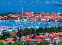 Another of the fantastic stops on the Desire Cruise Adriatic Itinerary is Koper Slovenia. Sexy all day and night on Desire Cruise. Koper Slovenia, Great Places, Places To Go, Seaside Cafe, Celebrity Cruises, Cruise Vacation, Cruise Destinations, Dubrovnik, Beautiful Islands