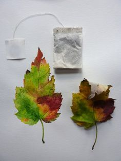 Fall leaf watercolor tutorial