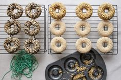 tiffanie turner/corner blog/bird seed rings/bird seed donuts