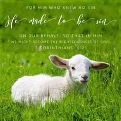 Bible Verses To Go - Inspirational Verse of the Day Encouraging Bible Quotes, Inspirational Verses, Bible Encouragement, Bible Verses Quotes, Bible Scriptures, Healing Scriptures, Christian Encouragement, Bible Verse Art, Free Bible