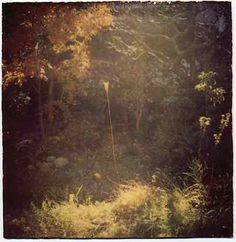 Masao Yamamoto The pinner is Kate Williamson Looking at her boards is like being welcomed into a truly artistic soul. @Kate Williamson