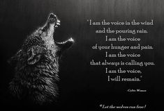 i am the voice..