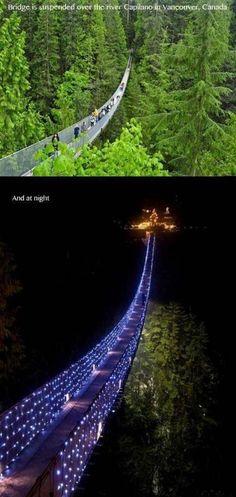 Amazing Bridge In Capilano Canada