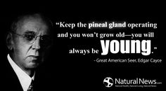 """Keep the pineal gland operating and you won't grow old—you will  always be young."" ~ Great American Seer, Edgar Cayce  http://www.naturalnews.com/pineal_gland.html"