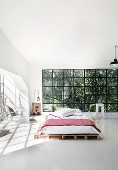floor to ceiling windows /