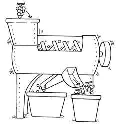 ¿Cómo se elabora el #vino? 10 pasos fundamentales