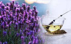 Levandule - účinky na zdraví, co léčí, použití, užívání, využití - Bylinky pro všechny Lavender Oil Uses, Lavender Benefits, Lavender Scent, Lavender Flowers, Natural Home Remedies, Natural Healing, Herbal Remedies, Natural Oils, Best Hair Growth Oil
