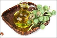 ayurvedic hair oil is effective to treat all the hair problems. Here are the 15 best Ayurvedic hair oils that can helps to hair growth and treat hair loss. Castor Oil Uses, Castor Oil For Skin, Castor Oil Benefits, Castor Oil For Hair Growth, Oil For Hair Loss, Hair Growth Oil, Oils For Skin, Purge, Ayurvedic Hair Oil