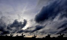 Horses from Willie Mullins' stable on the gallops at Cheltenham Racecourse.