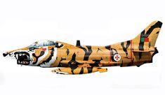 Aeritalia Fiat G.91 R-3, Escuadra 301, Força Aérea Portuguesa, NATO Tiger Meet, 1992. Tiger Ii, Air Force Aircraft, Nose Art, Luftwaffe, Military Aircraft, Rolls Royce, Fiat, Fighter Jets, Portugal