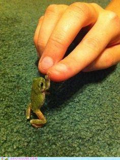 OMG it's so tiny!!!!