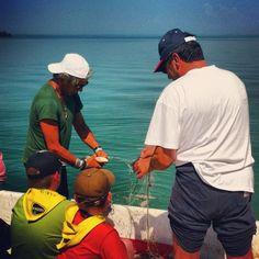 Pescatori al lavoro mostrano la loro attività giornaliera, ciò che il lago dona