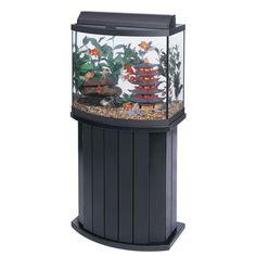30 Gallon Aquarium and Stand
