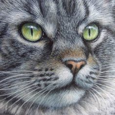 Gioia's portrait (detail) - acrylic on rock - cm. 30 | My last cat painted on a sea rock! For prices and info about my rock painting pet portraits please use the contact form on my website: www.robertorizzo.com