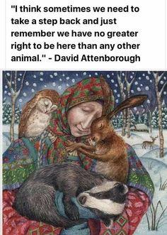 Wild Creatures, Cute Creatures, Beautiful Creatures, Animals Beautiful, Baby Animals, Cute Animals, Save Our Earth, David Attenborough, Kitten Care