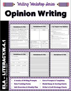 Essay Pro Writing