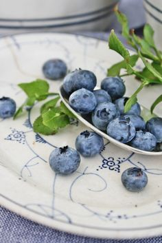 blueberries on blue and white china