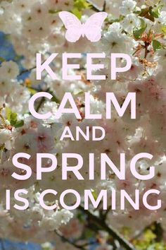 I am so glad spring will come early!!! I love spring time and i will finally get to do my flower bed. This louisiana weather is a bit crazy!!! Lol