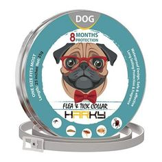 When you put any of these dog flea collars on your pets, you can keep your dog safe and healthy. Tick Control, Flea And Tick, Ticks, Fleas, Best Dogs, Your Pet, Collars, Teddy Bear, Puppies