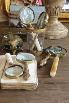 Magnifying Glass Collection - Vintage Magnifying Glasses, Brass Magnifying Glasses   Soft Surroundings
