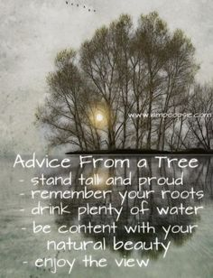 Advice from a tree – Stand tall and proud – Remember your roots – Drink plenty of water – Be content with your natural beauty – Enjoy the view
