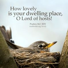 How lovely is your dwelling place, O Lord of hosts! Encouragement Quotes, Faith Quotes, Bible Quotes, Bible Art, True Quotes, Scripture Verses, Bible Scriptures, Psalm 84, Inspirational Verses