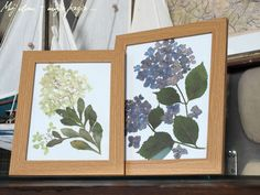 flowers, picture, diy, hydrangea