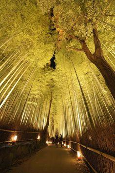 Kyoto : découvrez l'étonnante fête des lumières d'Arashiyama - Linternaute.com Voyager