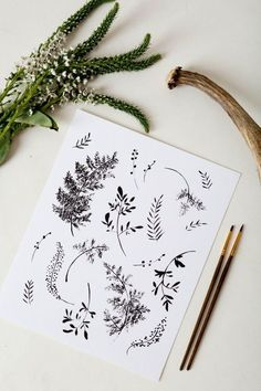Illustration illustration how to decorate kitchen walls - Kitchen Decoration Art And Illustration, Floral Illustrations, Botanical Illustration Black And White, Freetime Activities, Karten Diy, Drawn Art, Hennas, Botanical Art, Hand Lettering