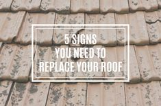 Are your shingles falling off? Does your attic get wet after it rains? If so, it's probably time to replace your roof. Getting Wet, Attic, Ivy, Construction, Signs, Building, Shop Signs, Sign, Attic Rooms