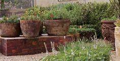 Horta em vaso: você pode plantar - Planeta Sustentável