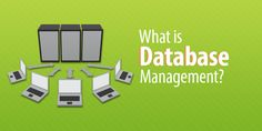 Learn what database management is and why it matters for your organization. It Management, Organization, Learning, Getting Organized, Organisation, Studying, Tejidos, Teaching, Onderwijs