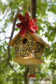 Bird House Bird Feeder